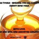 Shanah Tovah – Happy 5774